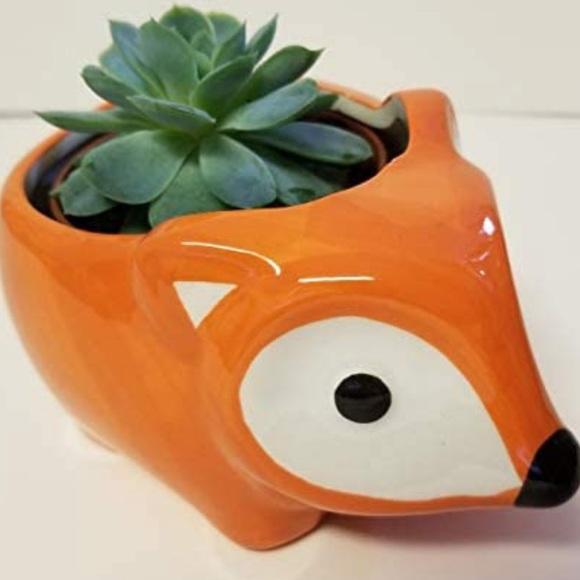 COPY - Adorable baby Fox planter/kitchen sponge h…